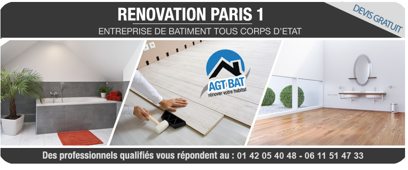 renovation appartement paris pas cher